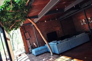 seminoff kliewer house living room tree
