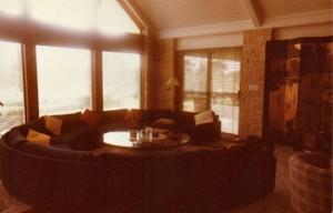3164 Brush Creek Road-2 disco sofa