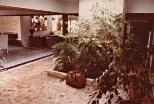 3164 Brush Creek Road-entry plants