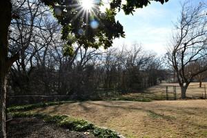 1 - Gable house backyard