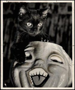 halloween-cat-1950s
